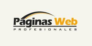 paginas-web-profesionales-1-300x151